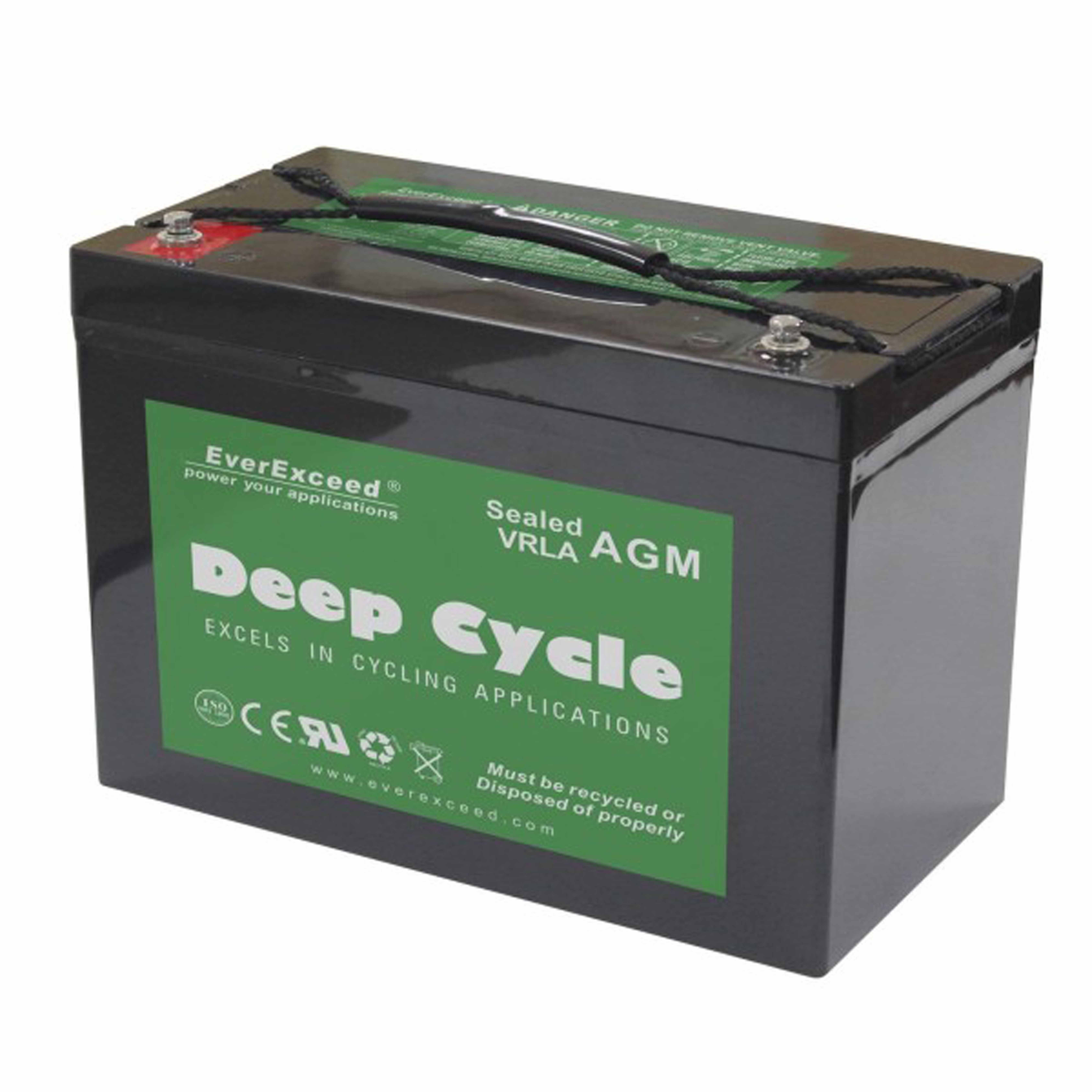Аккумуляторная батарея EverExceed DP - фото